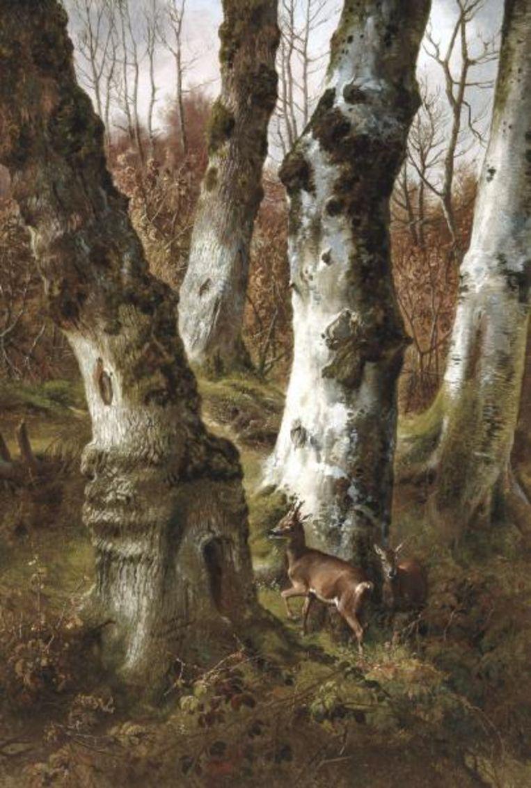 'Biches dans les bois' (1846) Beeld Eugène Verboeckhoven