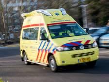 Bestuurder rijtuig met pony's zwaargewond door botsing met auto in Beilen