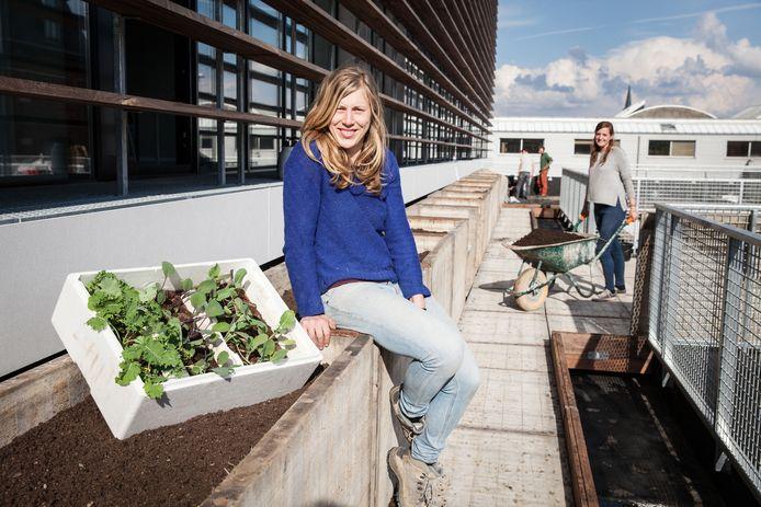 Oprichtster van Roof Food, Sabien Windels, coördineert de bouw van de moestuin.