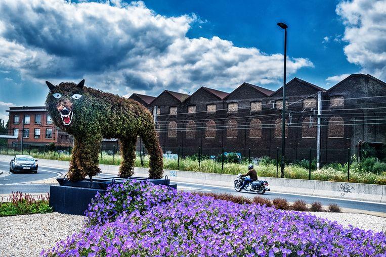 Een wolvin (het symbool van de stad) staat met psychotische blik naar het verkeer te kijken. Beeld Tim Dirven