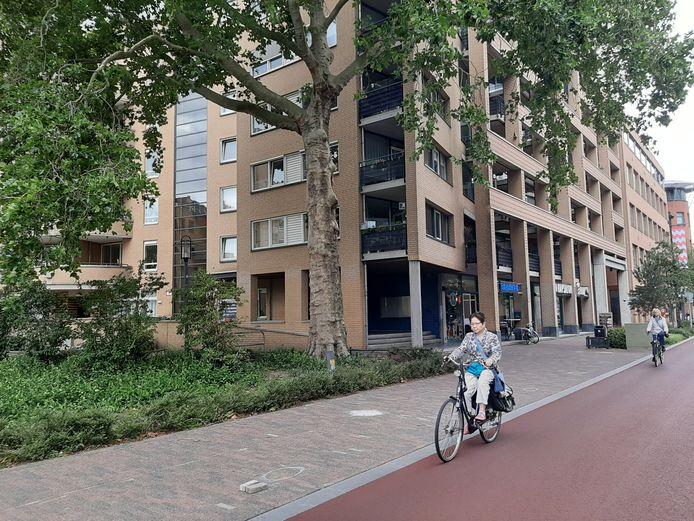 Phia van Veenendaal Staete aan de Vestdijk in Eindhoven.