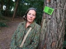 Omstreden grootschalige kap-operatie in bossen bij Son uitgesteld