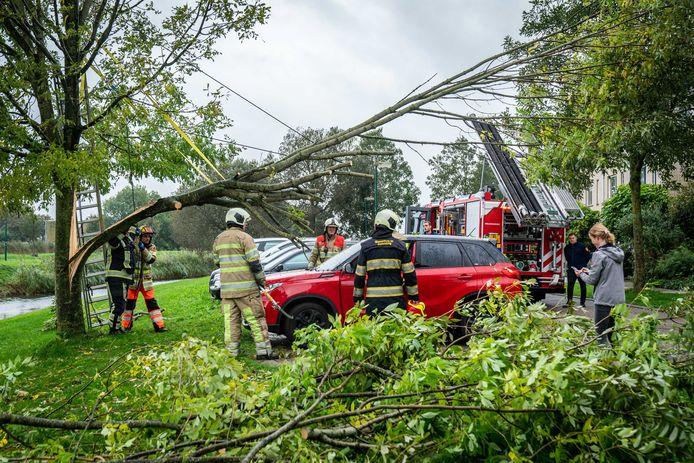 De brandweer was druk bezig om het stuk boom van de auto's af te halen.