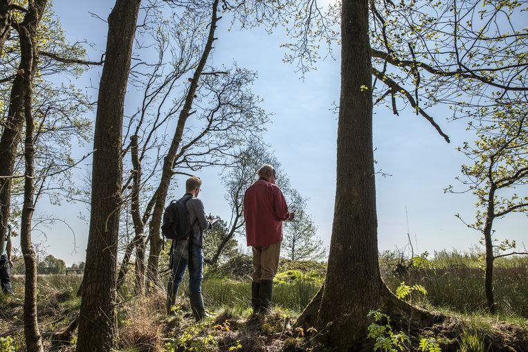 Albert de Jong (27) en Arend van Dijk (68) tellen vogels op het gehoor in het Nationaal Park Dwingelderveld in Drenthe. Beeld Harry Cock