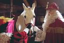 Amerigo en Sinterklaas zijn dikke vrienden. © FOTO ANP