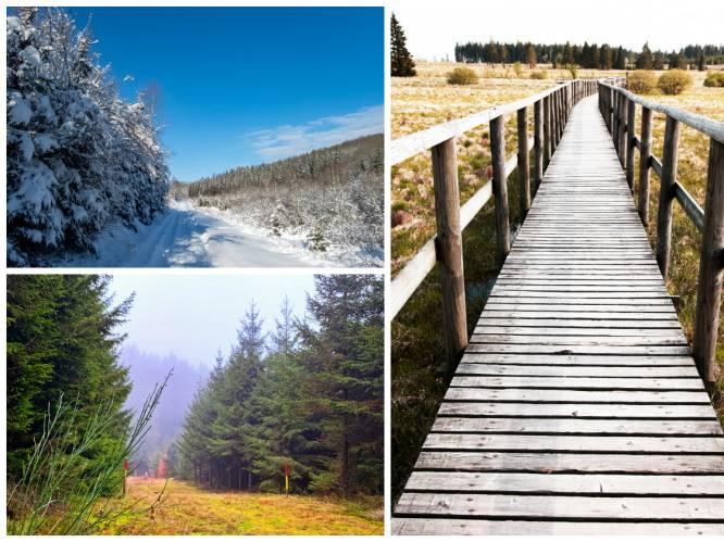 Op wandel in de winter: de vijf mooiste natuurroutes in eigen land