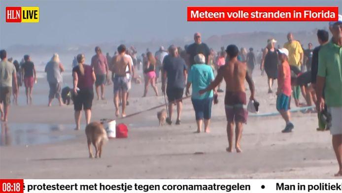 HLN LIVE, het eerste 24/7 live videonieuwskanaal in Vlaanderen.