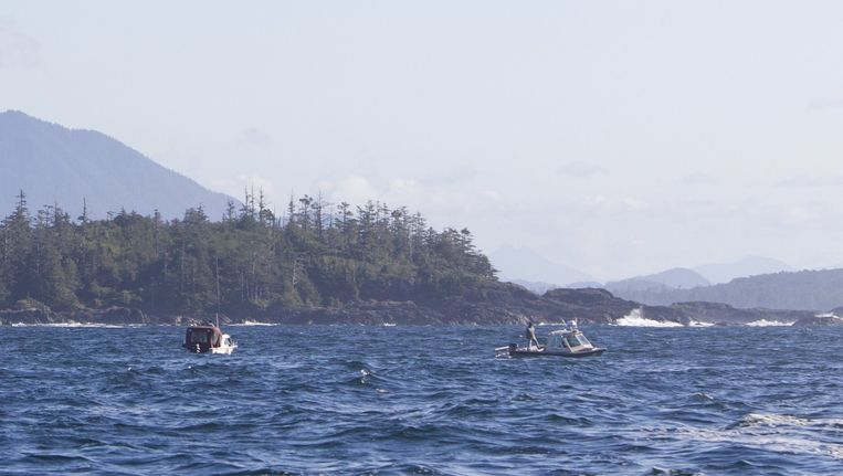 Boten zoeken naar vermisten voor de kust van Tofino. Beeld reuters
