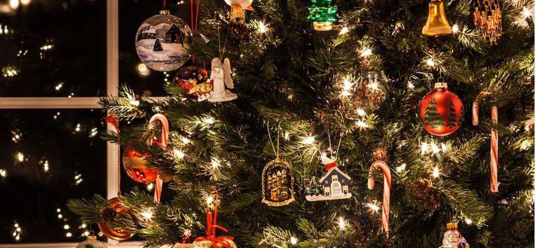 Sylvia komt tot een nare ontdekking over de kerstlampjes