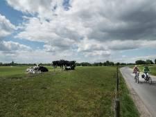 Zo wordt het sluipverkeer rond knooppunt Hooipolder aangepakt: 'Dit lost de trammelant op'