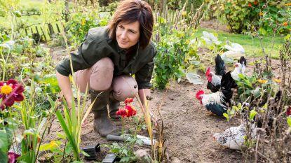 Je tuin inrichten met een klein budget? Dat doe je met deze tips