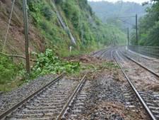 Les trains à l'arrêt dans le sud du pays
