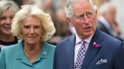 Britse koninklijke familie zet verpleegkundigen in de bloemetjes