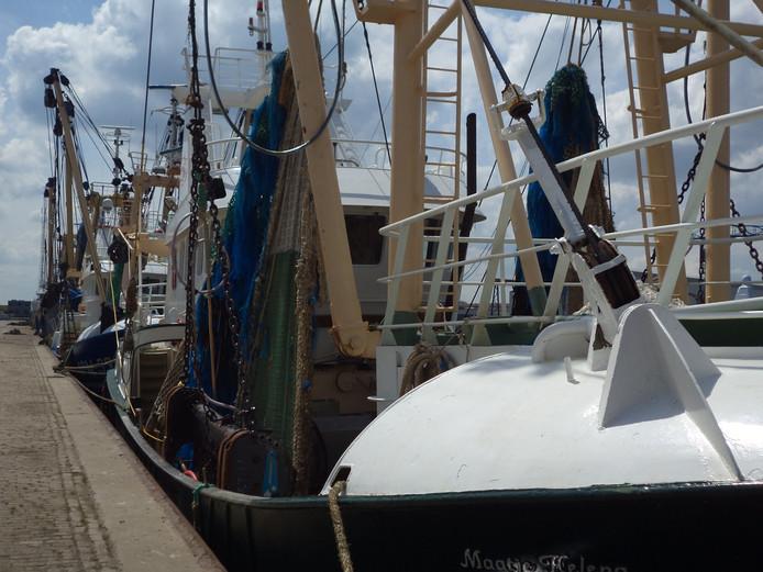 Vlissings-Arnemuidse vissersvloot.