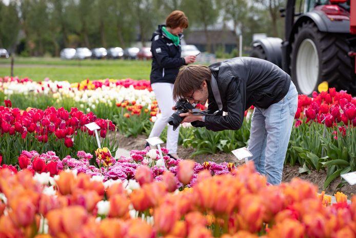 Bezoekers van Tulpenfestival Noordoostpolder in Creil, twee jaar geleden.