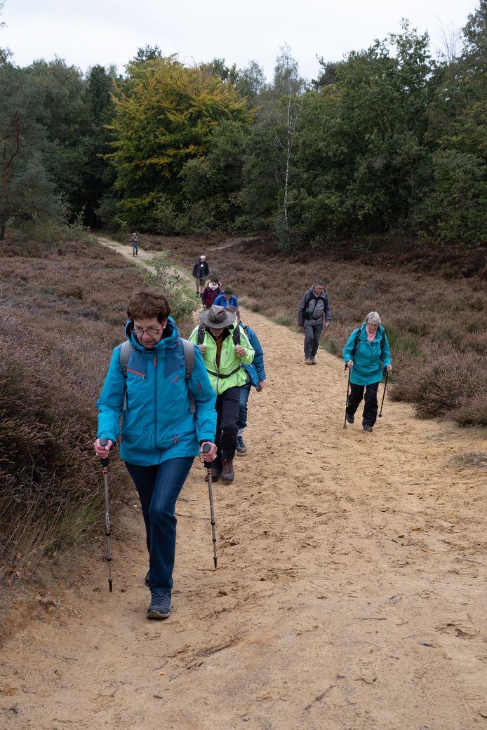 Ze struinen onder meer door Thor Park, Bokrijk en Rivierpark Maasvallei.