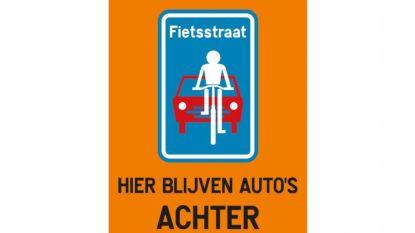 Gemeente start met proefopstelling voor fietsstraten