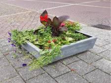 Net geplaatste bloembakken vernield in Brummen: 'Best veel mensen zijn er kwaad over'