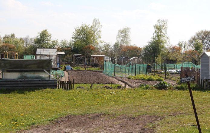 Het volkstuincomplex aan de Zwilbroekseweg, waar naast de tuintjes 10 tiny houses worden gedacht.