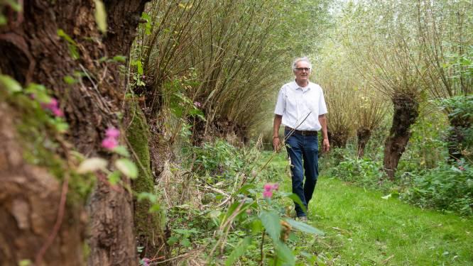 Het Biesboschpad herinnert wandelaars aan 600 jaar Sint-Elisabethsvloed