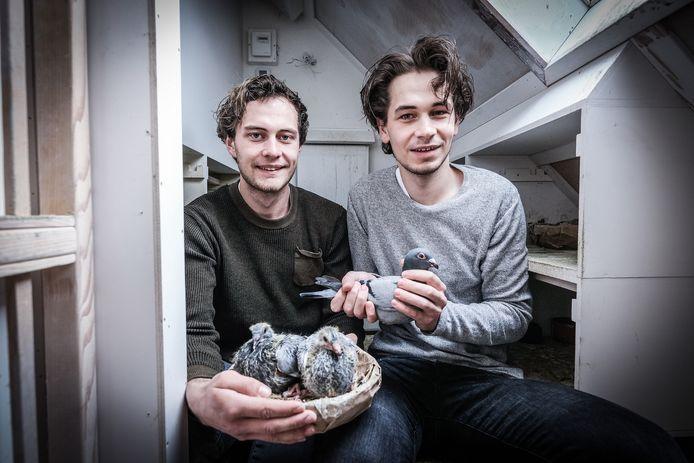 Duivenmelkers Arnoud (rechts) en Walter Ebbers willen hun sport populairder maken in de Achterhoek. Foto: Jan Ruland van den Brink