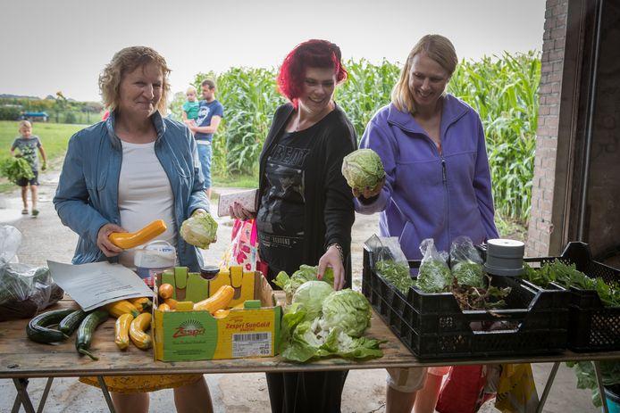 Hilda Grit (rechts, in het paars) maakt dankbaar gebruik van de 'uitdeelmarkt' van volkstuinvereniging Wijhe.