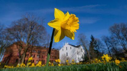Zonnig en warm paasweekend: tot 24 graden op zaterdag