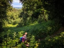Berg en Dal wandelgemeente van het jaar, maar niet alleen