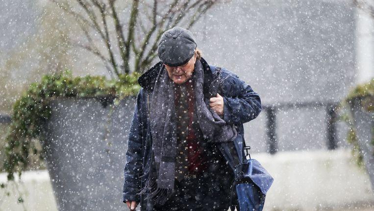 In Limburg is de eerste natte sneeuw gevallen. Beeld ANP