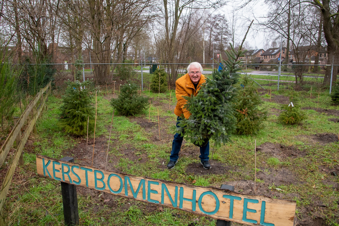 Johan Peppelman bij het kerstbomenhotel in Harderwijk.  Na de lockdown kunnen de mensen daar weer terecht met hun kerstboom.