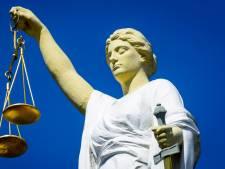 Statushouder (22) liet zich inspireren door hulpboek bij 'poging tot verkrachting'