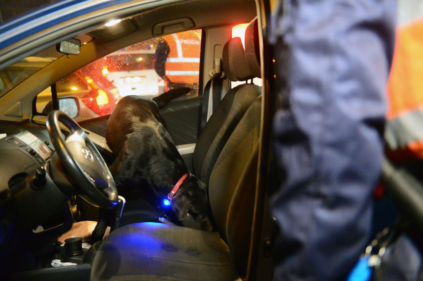 Een drugshond hielp de politie bij de drugs- en alcoholcontroles in de politiezone Mira.