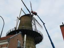 Laatste molen van Dordrecht tóch nog gered door Molenfonds