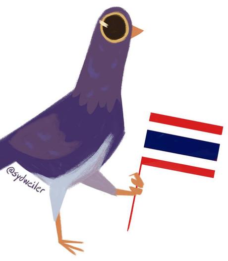 Zo verovert een paarse, headbangende duif het internet