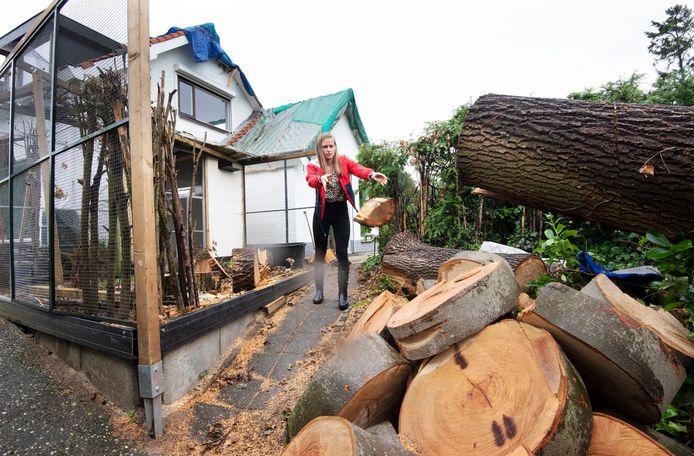 Dochter Pleun van de Water helpt met de houtblokken naast de vernielde volière.