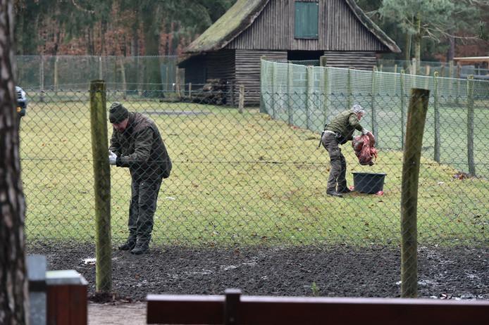 De ingewanden werden achtergelaten bij het hertenkamp.