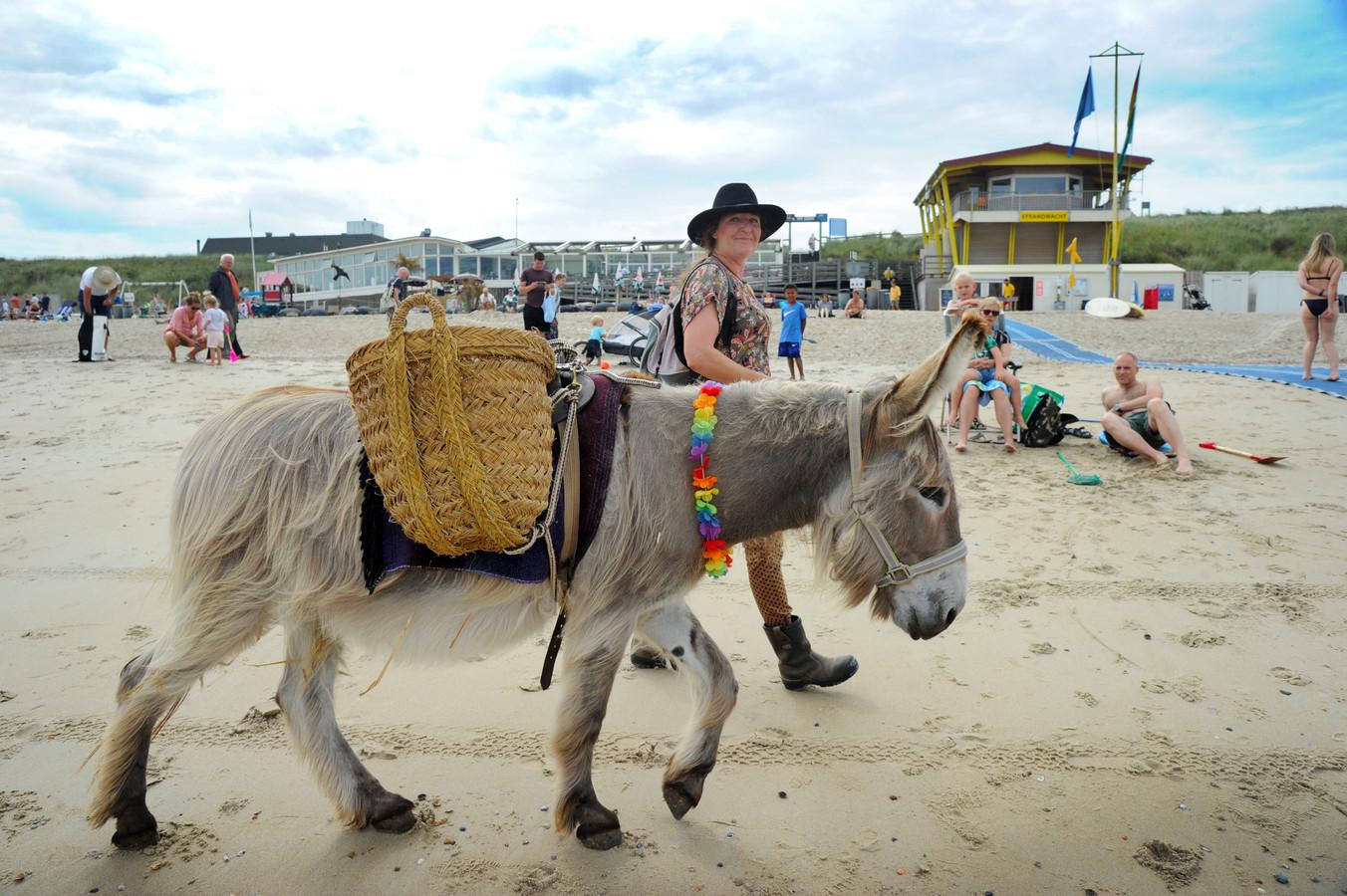 Ezeltje Boets is op het strand om rommel op te ruimen.