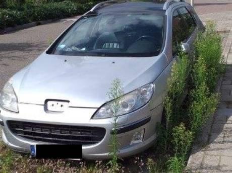 Poolse auto staat al een half jaar onaangeroerd in de straat: 'Onkruid staat een meter hoog'