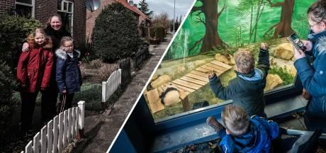 Nieuws gemist? Grensbewoners mogen huis niet meer uit en dubbel gevoel bij flitsopening dierentuin