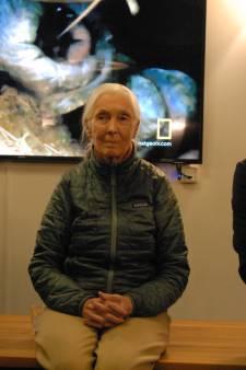Jane Goodall luidt in de Brabanthallen de noodklok voor de chimpansee
