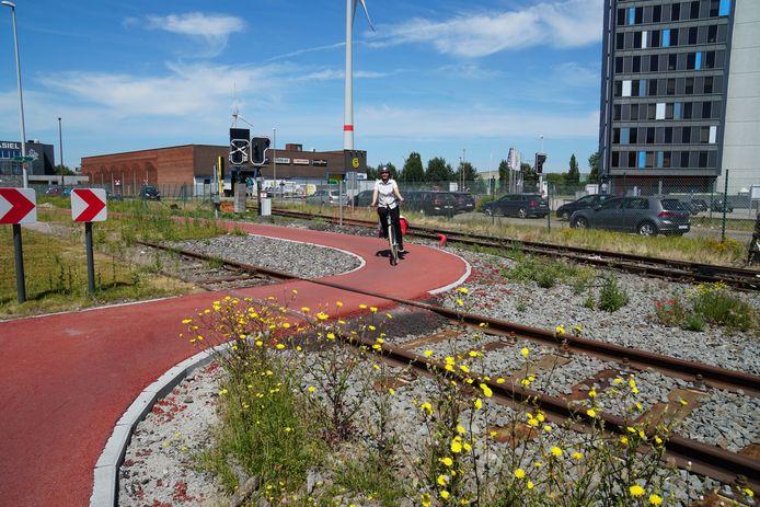 Door de bocht in het fietspad kruisen fietsers het spoor loodrecht. Het risico dat er een wiel vastraakt in de sporen is zo minimaal.