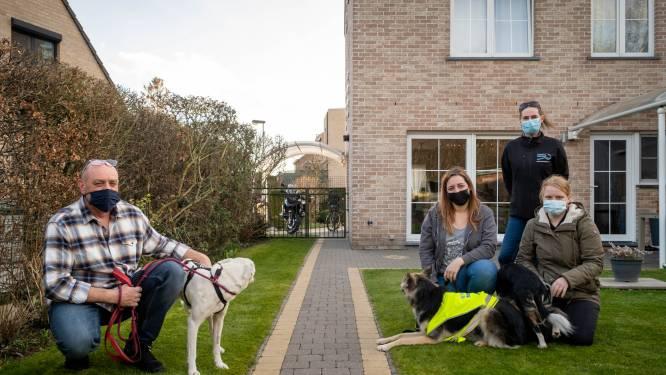"""Weggelopen hond Mila na dertien dagen weer thuis: """"Bedankt LOSTDogzz, jullie zijn grote helden"""""""