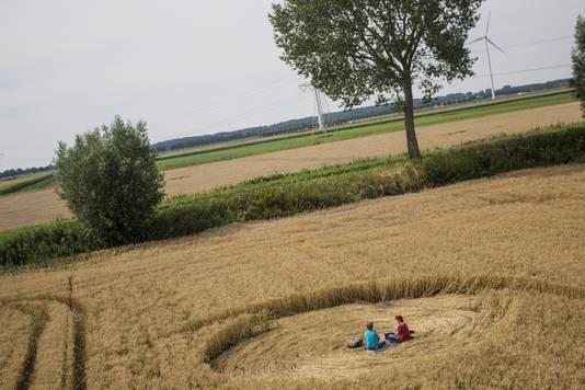 Op zaterdag 1 augustus is er opnieuw een graancirkel aangetroffen in Hoeven. De laatste maanden zijn er al verschillende graancirkels in omgeving Hoeven gevonden. Allen werden door medium Robbert van den Broeke woonachtend in Hoeven.