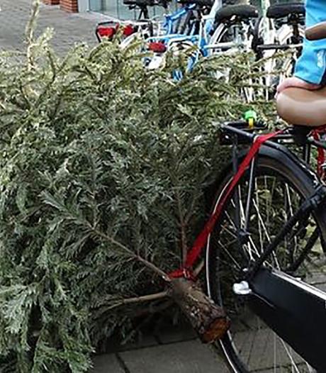 Stichtse Vecht gaat nog eens goed nadenken over afschaffen kerstbomenloterij