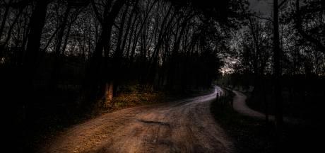Twee vrienden gaan trippen in het bos; opeens ziet de ene een demon in de andere, steekt hij hem 56 keer neer en laat hem achter