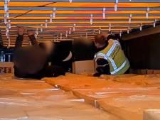 Minderjarige vreemdelingen verstopt in vrachtwagen bij Vlissingen-Oost