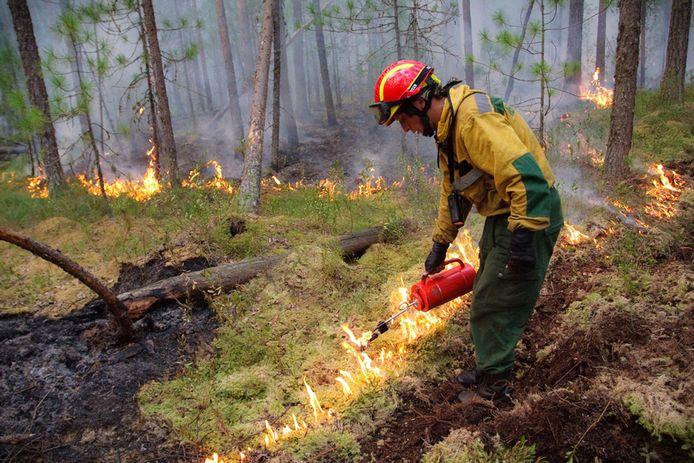 Bosbranden in Siberië.