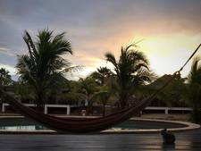 Voor 660 euro heeft dwergkonijn Stampertje toch nog een heerlijk leventje op Bonaire