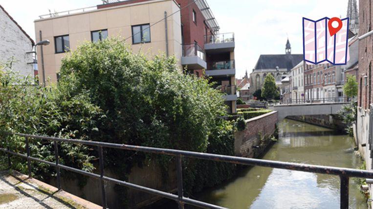Het Tierelierebrigske in Leuven. Veel inwoners van de stad wandelden er nog nooit over maar missen zo een mooie wandeling door een verrassend stadsdeel.