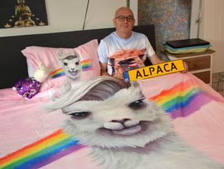 Clingenaar wil 'Alpaca'-nummerplaat, maar krijgt geen toelating